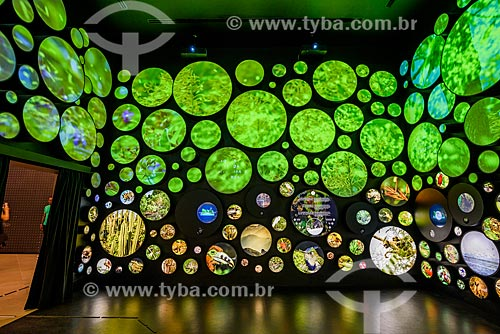 Interior da instalação Vida no Museu do Amanhã  - Rio de Janeiro - Rio de Janeiro (RJ) - Brasil