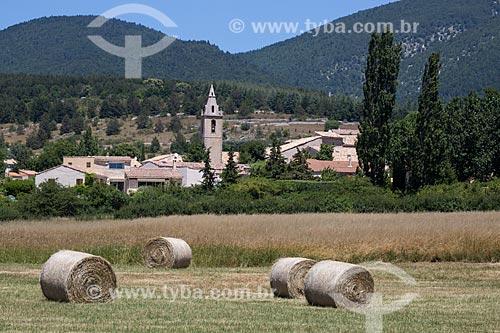 Colheita do feno com a cidade de Saumane ao fundo  - Saumane - Departamento de Alpes da Alta Provença - França