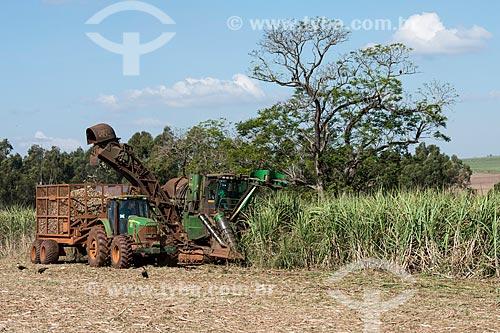 Colheita mecanizada de cana  - Iaras - São Paulo (SP) - Brasil