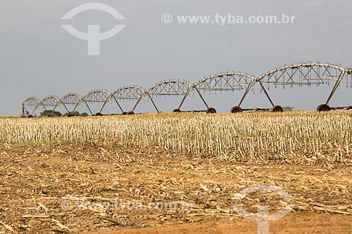 Irrigação com pivô central em plantação de cana-de-açúcar próximo a cidade de Itaberaí  - Itaberaí - Goiás (GO) - Brasil