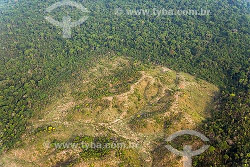 Foto aérea de trecho de floresta amazônica desmatada para pastagem  - Tucumã - Pará (PA) - Brasil