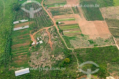 Foto aérea de horta na zona rural da cidade de Tucumã  - Tucumã - Pará (PA) - Brasil