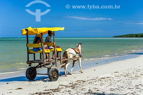Passeio de charrete na orla da Praia do Encanto  - Cairu - Bahia (BA) - Brasil