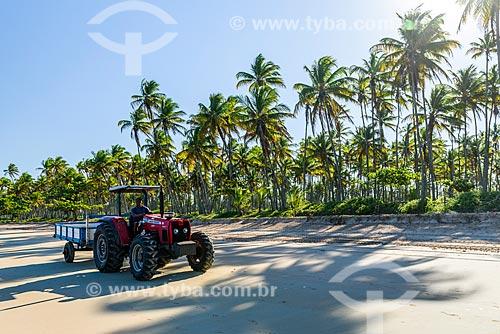 Trator na orla da Praia de Garapuá  - Cairu - Bahia (BA) - Brasil