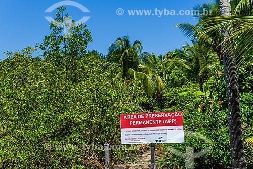 Vista de Área de Proteção Ambiental na Vila de Velha Boipeba  - Cairu - Bahia (BA) - Brasil