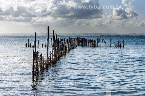 Curral de pesca na Praia da Ponta do Mutá  - Maraú - Bahia (BA) - Brasil