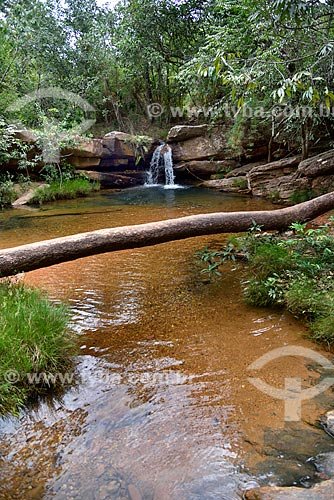 Santuário Ecológico Raizama - Fazenda Espaço Infinito no entorno do Parque Nacional da Chapada dos Veadeiros  - Alto Paraíso de Goiás - Goiás (GO) - Brasil