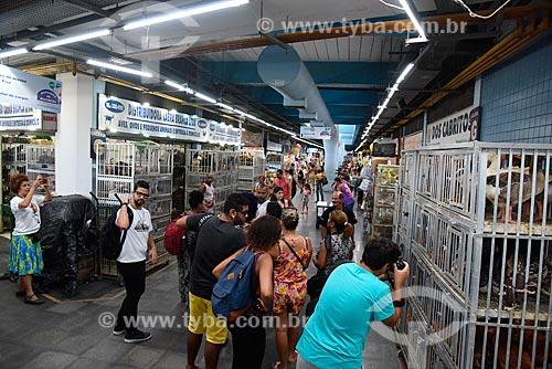 Loja de aves no Grande Mercado de Madureira (1959) - mais conhecido como Mercadão de Madureira  - Rio de Janeiro - Rio de Janeiro (RJ) - Brasil