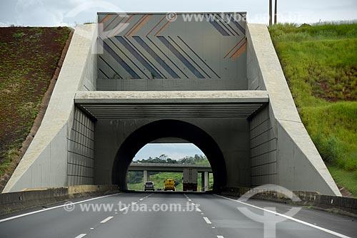 Túnel na Rodovia dos Bandeirantes (SP-348) sob a ferrovia  - Campinas - São Paulo (SP) - Brasil