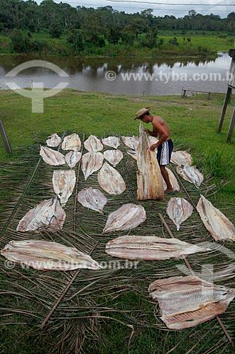 Secagem de Pirarucu (Arapaima gigas) na Comunidade Ribeirinha São Francisco do Aiucá  - Uarini - Amazonas (AM) - Brasil