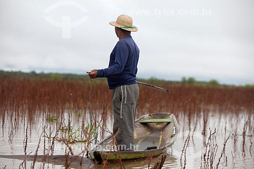 Pescador de pirarucu na Reserva de Desenvolvimento Sustentável Mamirauá  - Tefé - Amazonas (AM) - Brasil