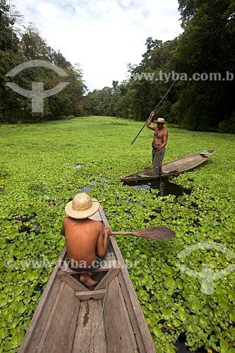 Menino e pescador de pirarucu na Reserva de Desenvolvimento Sustentável Mamirauá  - Tefé - Amazonas (AM) - Brasil