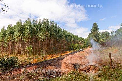 Forno usado na produção de carvão vegetal com plantação de eucalipto ao fundo  - Guarani - Minas Gerais (MG) - Brasil