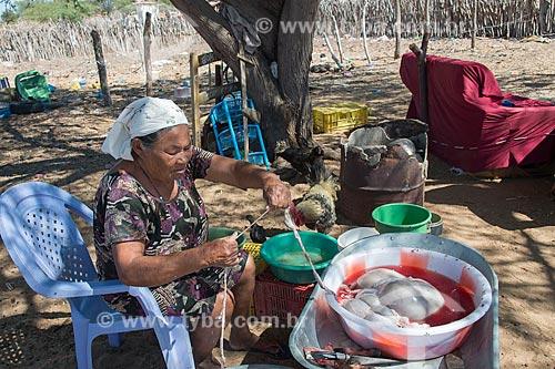 Mulher idosa limpando partes de bode na Aldeia Travessão de Ouro - Tribo Pipipãs  - Floresta - Pernambuco (PE) - Brasil