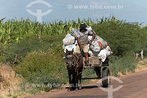 Índio truká transportando carvão em carroça - Tribo Truká  - Cabrobó - Pernambuco (PE) - Brasil