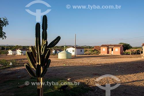 Casas na Aldeia Caatinga Grande - Tribo Truká  - Cabrobó - Pernambuco (PE) - Brasil