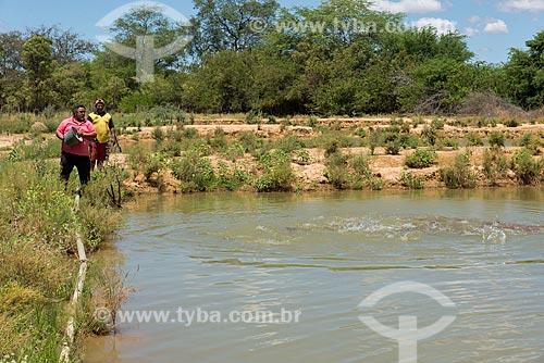 Homem alimentando peixes em tanque de piscicultura na Aldeia Caatinga Grande - Tribo Truká  - Cabrobó - Pernambuco (PE) - Brasil