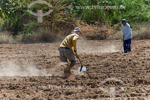 Trabalhadores rurais fazendo canal de irrigação para plantação na zona rural da Tribo Truká  - Cabrobó - Pernambuco (PE) - Brasil