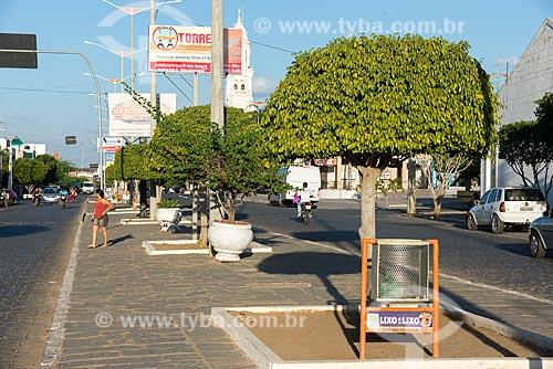 Lixeiras no canteiro central da Rua Coronel João Santa Cruz  - Monteiro - Paraíba (PB) - Brasil