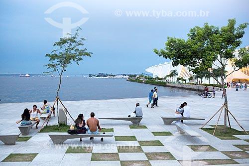 Pessoas sentadas no gramado da Praça Mauá com a Ponte Rio-Niterói ao fundo  - Rio de Janeiro - Rio de Janeiro (RJ) - Brasil