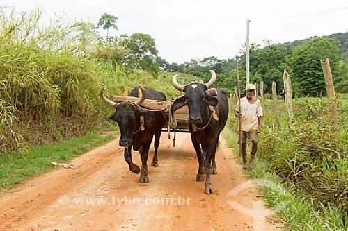 Carro de boi em zona rural  - Guarani - Minas Gerais (MG) - Brasil