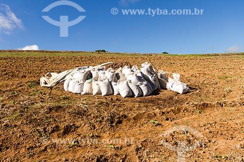 Uso de esterco na aplicação de adubo em plantação de tabaco na zona rural da cidade de Guarani  - Guarani - Minas Gerais (MG) - Brasil