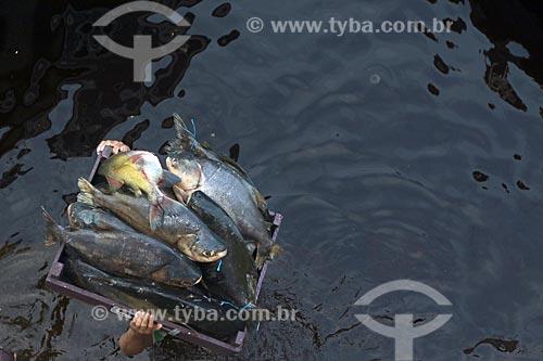Transporte de peixes no Rio Negro  - Manaus - Amazonas (AM) - Brasil
