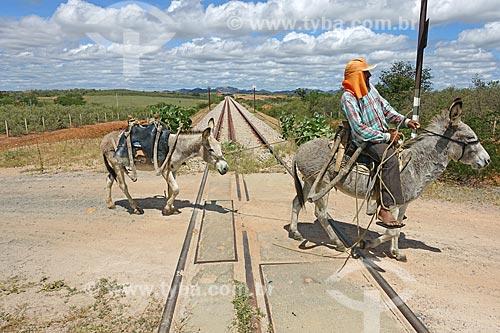 Homem montado em burro em passagem de nível da Ferrovia Nova Transnordestina  - Salgueiro - Pernambuco (PE) - Brasil