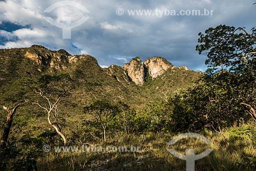 Vista geral da vegetação de cerrado no Parque Nacional da Serra do Cipó próximo ao Cânion das Bandeirinhas  - Santana do Riacho - Minas Gerais (MG) - Brasil