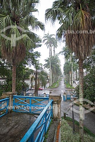 Alameda com Palmeira no Museu Nacional de Imigração e Colonização (1870)  - Joinville - Santa Catarina (SC) - Brasil