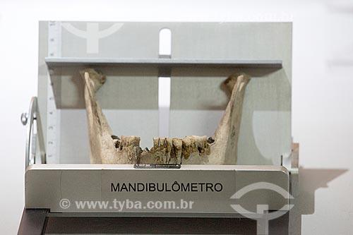 Detail of mandibulômetro - método de medição da mandíbula a fim de identificar o esqueleto de acordo com sexo, tamanho etc - Museu Arqueológico de Sambaqui de Joinville  - Joinville - Santa Catarina (SC) - Brasil