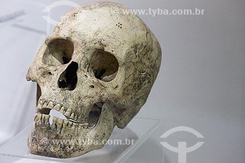 Detalhe de crânio em exibição no Museu Arqueológico de Sambaqui de Joinville  - Joinville - Santa Catarina (SC) - Brasil