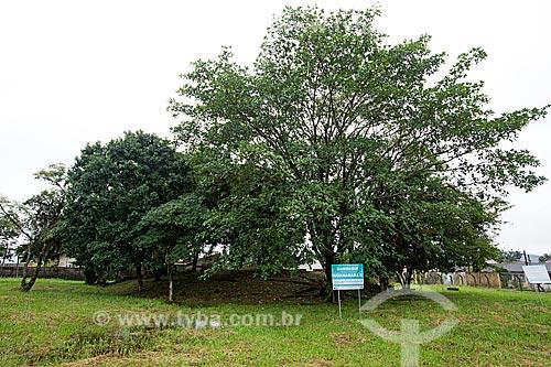 Sambaqui Guanabara II próximo à Baía da Babitonga  - Joinville - Santa Catarina (SC) - Brasil