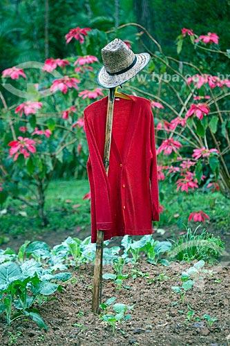 Espantalho em horta doméstica  - Blumenau - Santa Catarina (SC) - Brasil
