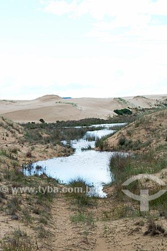 Dunas na Estrada Geral do Farol  - Laguna - Santa Catarina (SC) - Brasil