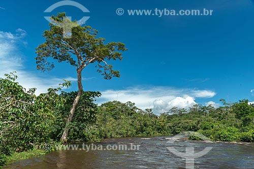 Leito do Rio Iratapuru na Reserva de Desenvolvimento Sustentável do Iratapuru  - Laranjal do Jari - Amapá (AP) - Brasil