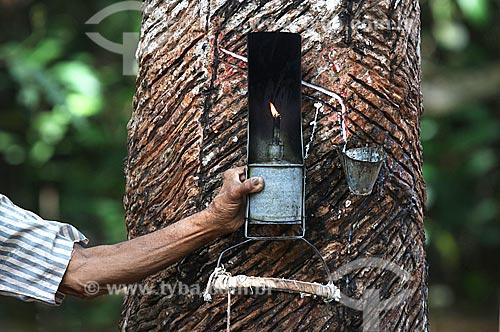 Detalhe de coleta de látex e poronga - luminária típica usada por seringueiros - na comunidade ribeirinha Nossa Senhora de Fátima  - Manaus - Amazonas (AM) - Brasil