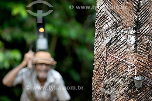 Detalhe de coleta de látex na comunidade ribeirinha Nossa Senhora de Fátima com seringueiro ao fundo  - Manaus - Amazonas (AM) - Brasil