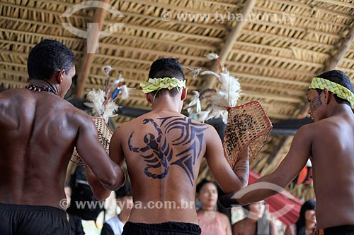 Ritual da tucandeira - rito de passagem da adolescência para a idade adulta - na Aldeia Tarruapé da tribo Sateré-mawé  - Manacapuru - Amazonas (AM) - Brasil