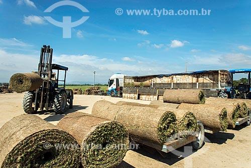 Colheita mecanizada de grama  - Tremembé - São Paulo (SP) - Brasil