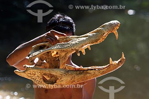 Ribeirinho segurando o esqueleto do crânio de um jacaré-açu (Melanosuchus niger)  - Amazonas (AM) - Brasil