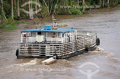 Balsa transportando gado no Rio Amazonas entre as cidade de Manaus e Itacoatiara  - Manaus - Amazonas (AM) - Brasil