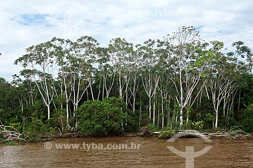 Rio Amazonas próximo à Itacoatiara  - Itacoatiara - Amazonas (AM) - Brasil