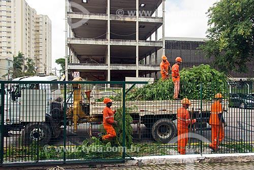 Funcionários da prefeitura recolhendo galho após a poda de árvore  - Jacareí - São Paulo (SP) - Brasil