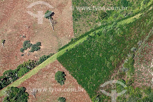 Vista de área desmatada no Parque Estadual do Ibitipoca  - Lima Duarte - Minas Gerais (MG) - Brasil