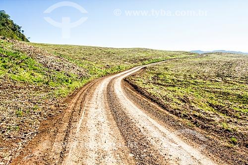 Estrada de Terra na zona rural da cidade de Treze Tilias  - Treze Tílias - Santa Catarina (SC) - Brasil
