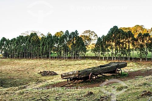 Paisagem rural no distrito de Linha Babenberg  - Treze Tilias - Santa Catarina - Brazil