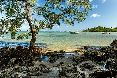 Vista da orla da Praia de Moreré  - Cairu - Bahia (BA) - Brasil