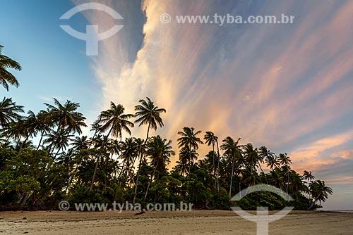 Vista da orla da Praia de Moreré durante o pôr do sol  - Cairu - Bahia (BA) - Brasil