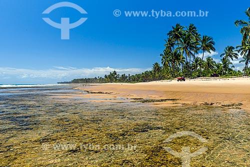 Vista da orla da Praia da Bombaça  - Maraú - Bahia (BA) - Brasil